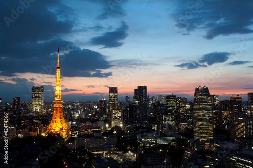 Staande foto Japan 東京タワー