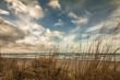 Fototapeten,ostsee,düne,küste,stranden