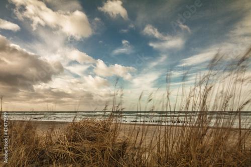 Fototapeten,ostsee,sanddünen,küste,strand