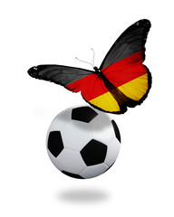 Concept - butterfly with German flag flying near the ball, like