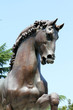 Cavallo - scultura