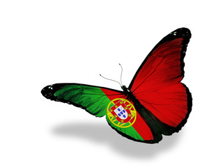 Portuguese flag butterfly flying, isolated on white background