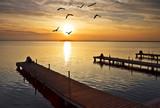 Fototapeta zwierzę - zwierzę - Jezioro / Staw