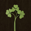 Clover leaves on wooden weathered texture. Vector, EPS10.