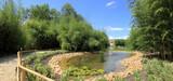 jet d'eau sur bassin de jardin