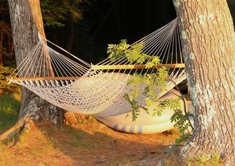 peaceful hammock between two trees
