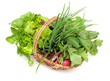 basket with fresh herbs and vegetables