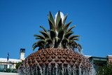 Pineapple Fountain, Charleston, SC.