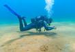 Lady diver