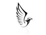 Hawk,Falcon,Eagle - vector, logo, sign, icon