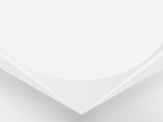Light-Gray-White (Silver) background BoxRiden-SG 003, white mesh