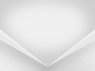 Light-Gray-White (Silver) background BoxRiden-SG 002 white mesh