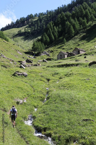 trekking in the mountain during summre time