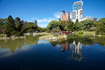 Japanese garden and the skyscrapers on a background of blue sky