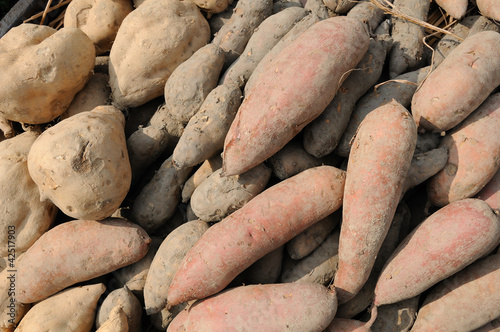 Potato and yam background