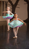 Two Adorable Ballet Students