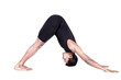 surya namaskar dog pose