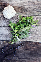Herb Bundle