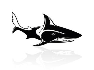 The vector image of a shark, orca, logo, sign