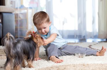 kid feeding dog puppy indoor