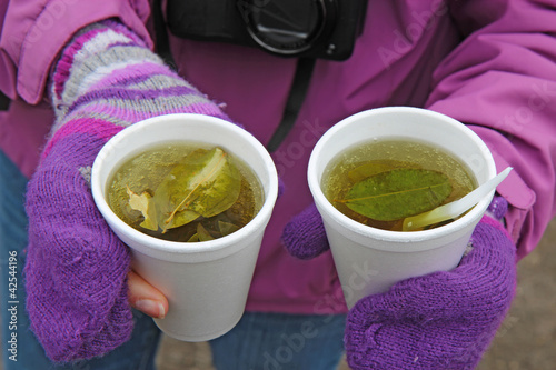 Two cups of coca tea in Ecuador