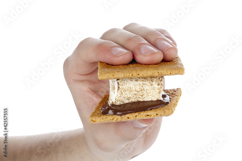 person holding a smore sandwich