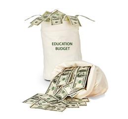 Bag with educational budget