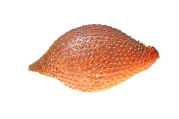 Salacca fruit isolated