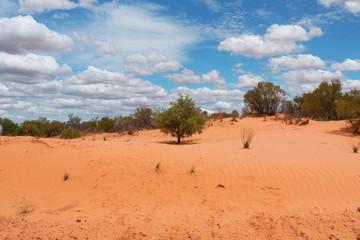 Farbige Wüste