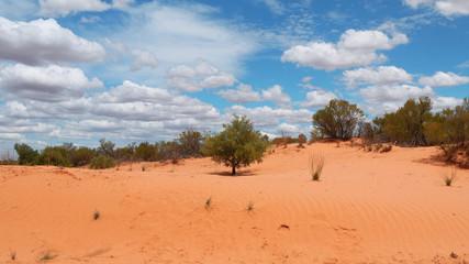 Farbkontraste in der Wüste