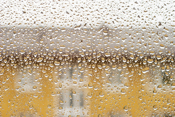 Window Water Drops