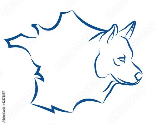 chiens français, chiens de France, éleveur