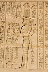 Ancient Egyptian Priestess for Hapi God