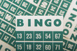 Green bingo cards isolated