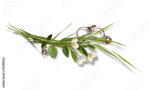 Bouquet with white anemones isolated on white