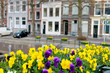 Flowers on the streets of Gorinchem. Netherlands