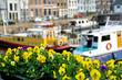 Flowers on the streets of Gorinchem. Netherlands