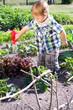 Kleiner Junge gießt Salat