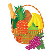 vector of a fruit basket