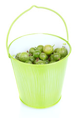Green gooseberry in metal bucket isolated on white