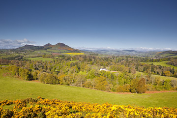 Scott's View in the Scottish Borders