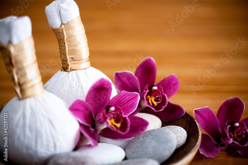 Pochons massage Luk Pra Kob
