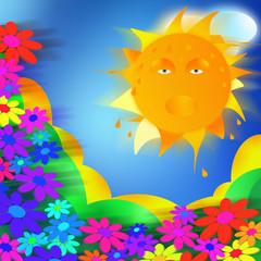 colline e fiori al sole
