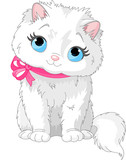 Fototapety Cute white cat