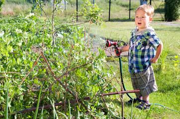 Kleiner Junge gießt Erbsen