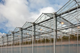 Sideview of a greenhouse in The Netherlands