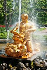 triton fountain in   peterhof, russia