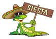 Lizard Sombrero Sieste