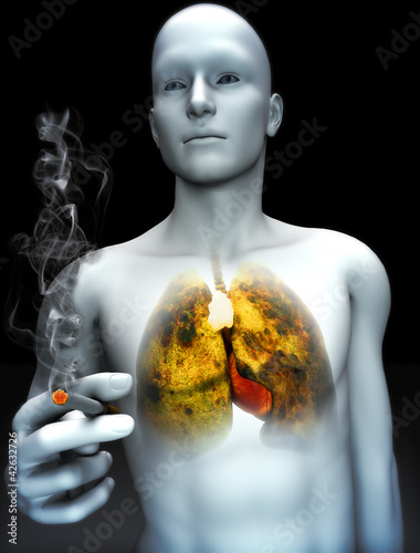 Smoking kills concept ,Male smoking with view of rotting lungs