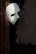 Masquerade - Phantom of the Opera Mask on Vintage Door